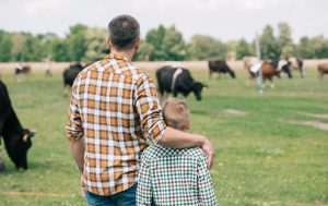 Father with arm around sun looking at cows on farm